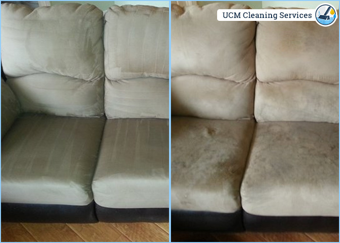 New York Cleaning Services Carpet Amp Upholstery